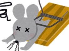 ネズミ 駆除 業者